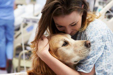 Zooterapia trateaza depresiile