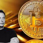 Musk arunca Bitcoin din cauza problemelor climatice. Este rau pentru mediu?